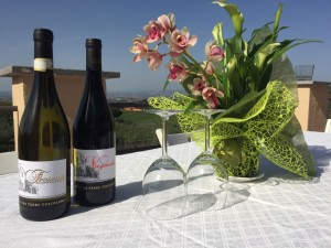 Celebrate-at-the-Minardy-Winery