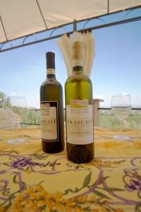 Frascati-White-Wine