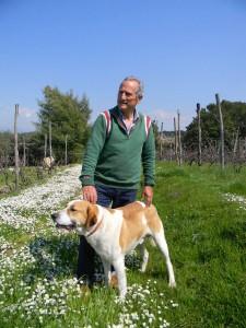 vintner-Umberto Tobia dog